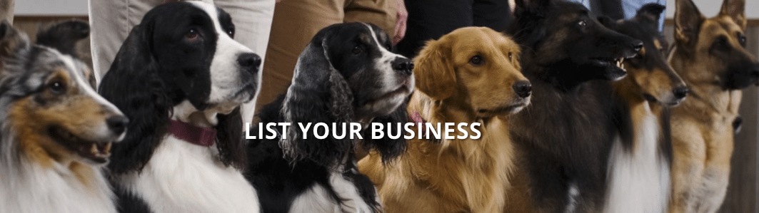 500 Free Business Listings - All Things Dog